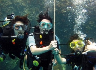 Dive Inn Scuba